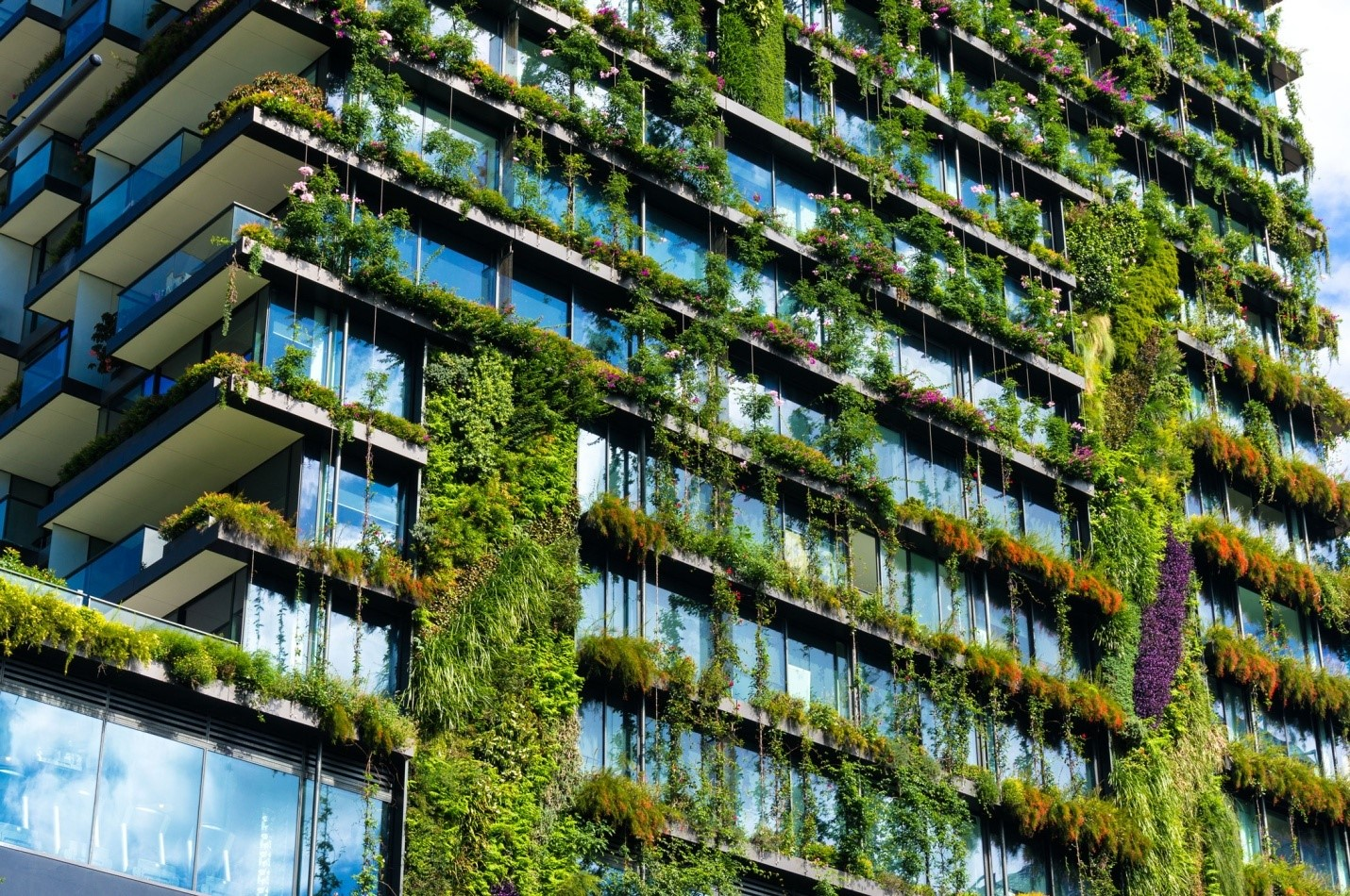 Green Building